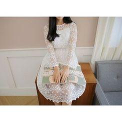 Envy Look - Set: Lace Sheer A-Line Dress + Slipdress