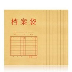 Bookuu - Set of 10: Document Sleeve