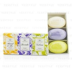 Caswell Massey - Signature Soap Set: Almond and Aloe, Lavender, Verbena