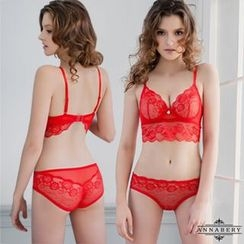 Ayoka - Set: Embroidered Sheer Bra + Panties