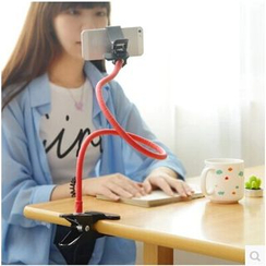 Class 302 - Phone Holder with Clip
