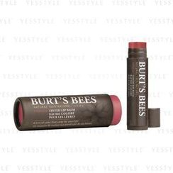 Burt's Bees - 塗鴉彩色唇膏#3 紅豆色