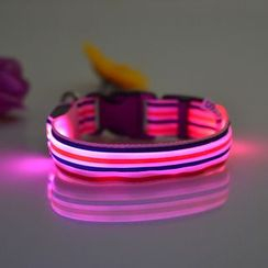 Hotaru - LED Pet Collar