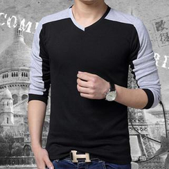 Gurun Vani - V-Neck Color-Block T-Shirt