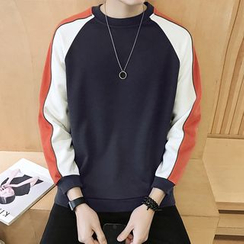 Alvicio - Colour Block Sweatshirt