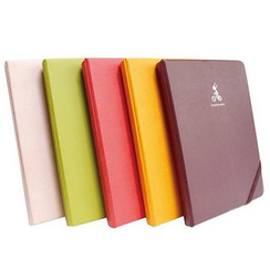 BABOSARANG - 4'x 6' Photo Album (Small)