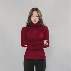 ERANZI - Turtle-Neck Rib-Knit Top