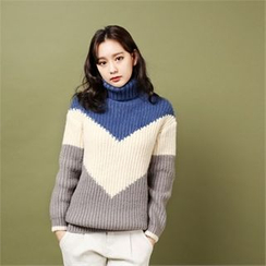 Styleberry - Turtle-Neck Color-Block Sweater