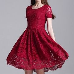 Dream a Dream - Short-Sleeve A-Line Lace Dress