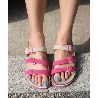 DANI LOVE - Color-Block Buckled Slippers