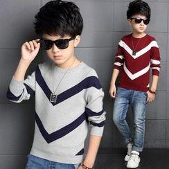 Pegasus - Kids Chevron Sweater