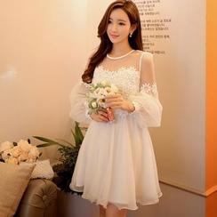 Dabuwawa - Lace Panel Tulle Dress