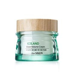The Saem - Iceland Water Volume Hydrating Cream (For Oily Skin) 80ml