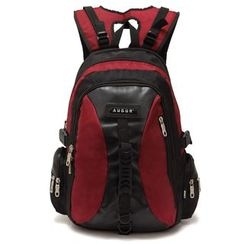AUGUR - Two-Tone Backpack