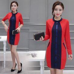 Sienne - Color Block Long Sleeve Sheath Dress