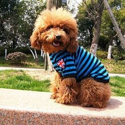 Hotaru - Pet Striped T-Shirt Costume