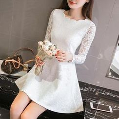 Sienne - Long-Sleeve Lace Panel A-line Dress