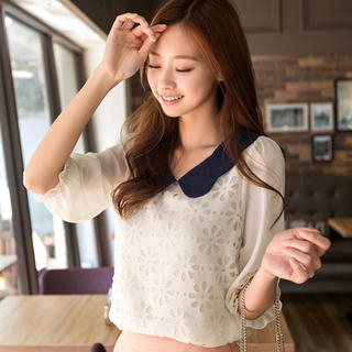 Tokyo Fashion - Contrast Collar Perforated Chiffon Blouse