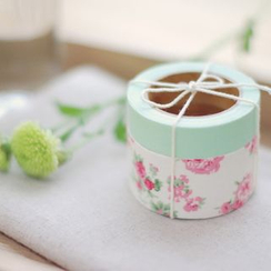 LIFE STORY - 'Daily Like' Series Decorative Tape Set (2 pcs) - GREENY