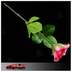 kingmagic - Magic Lighted Rose