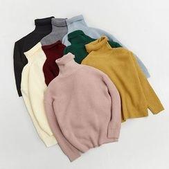Windflower - Plain Turtleneck Sweater