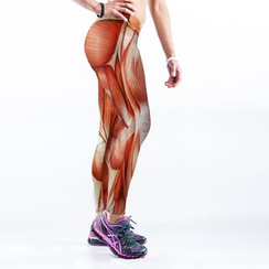 Omifa - Muscle Print Leggings