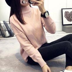 Asally - Plain Turtleneck Sweater