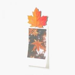 iswas - Leaf Magnet Set
