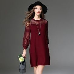 Y:Q - Lace Panel Long Sleeve Knit Dress