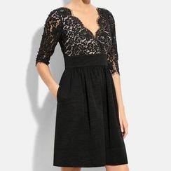 Dream a Dream - Long-Sleeve Lace A-line Dress