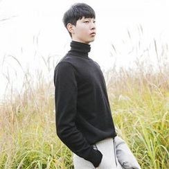 STYLEMAN - Turtle-Neck Wool Blend Sweater