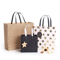 Homey House - Printed Paper Gift Bag