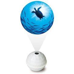 DREAMS - Projector Ocean (White / Sea Turtle)