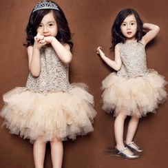SEE SAW - Sleeveless Lace Panel Tulle Dress
