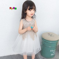 Cuckoo - Kids Lace Trim Sleeveless Tulle Dress