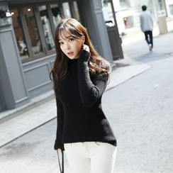 Envy Look - Mock-Neck Ribbed Sweater