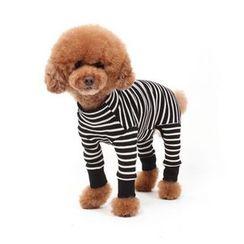 LIFE STORY - Pet Stripe Bodysuit Costume