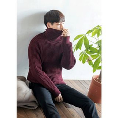 GERIO - Turtle-Neck Rib-Knit Sweater