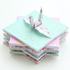 Class 302 - Printed Origami Paper Set