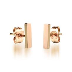 騰翼 - 金屬耳環