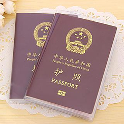 Good Living - Transparent Passport Case