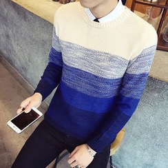 Alvicio - Color Block Sweater