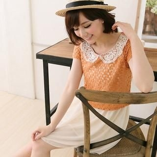 CatWorld - Inset Chiffon Crochet Dress