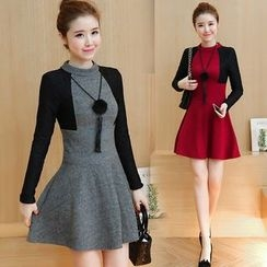 Elinor - Color Panel Long Sleeve A-Line Mini Dress