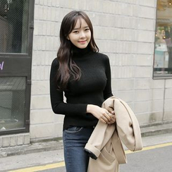 Envy Look - Turtle-Neck Slim-Fit Knit Top