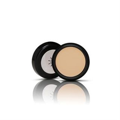 Missha - The Style Perfect Concealer - Light Beige