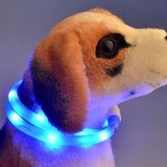 Hotaru - Rechargeable LED Pet Collar