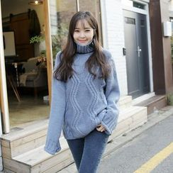 Envy Look - Turtle-Neck Cable-Knit Sweater