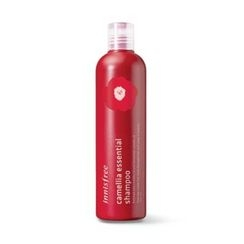 Innisfree - Camellia Essential Shampoo 300ml