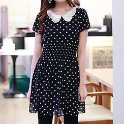 Rocho - Polka Dot Collared Chiffon Dress